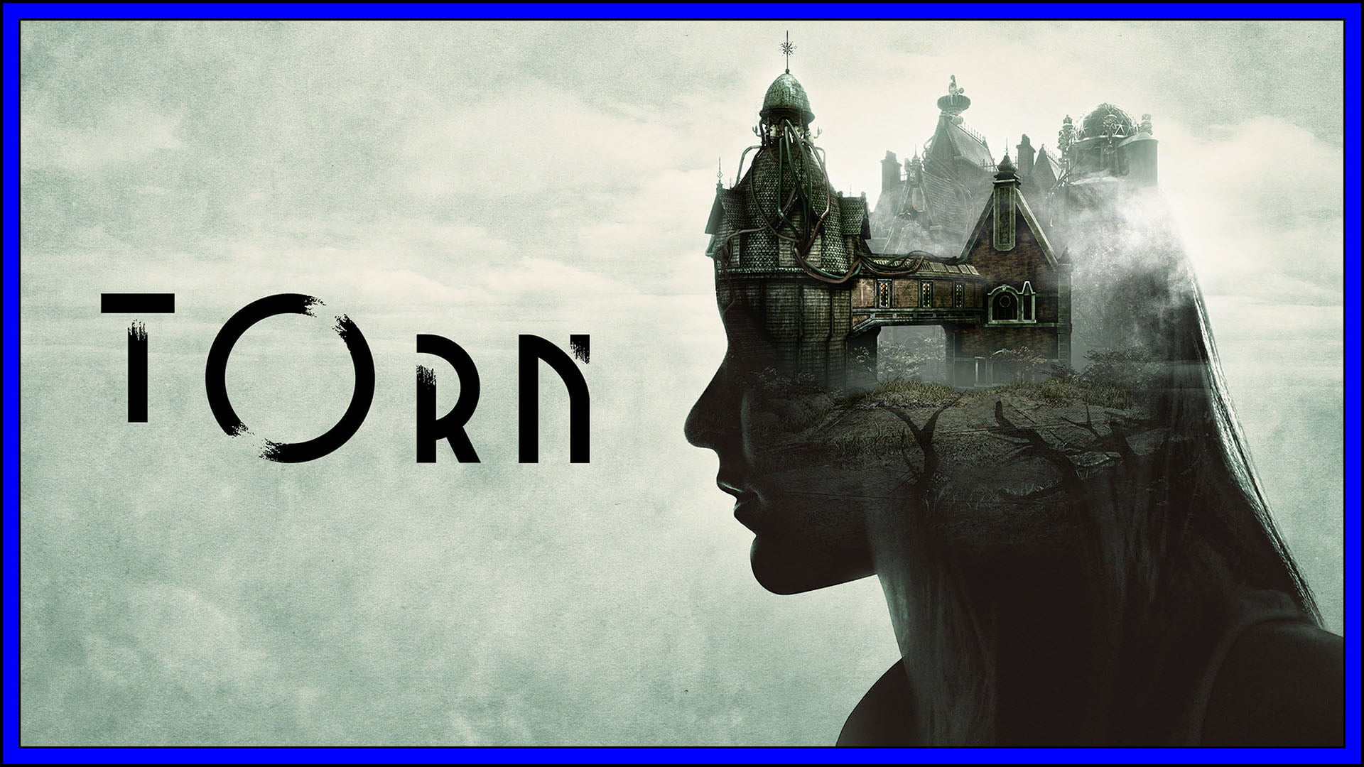 Torn Fi3
