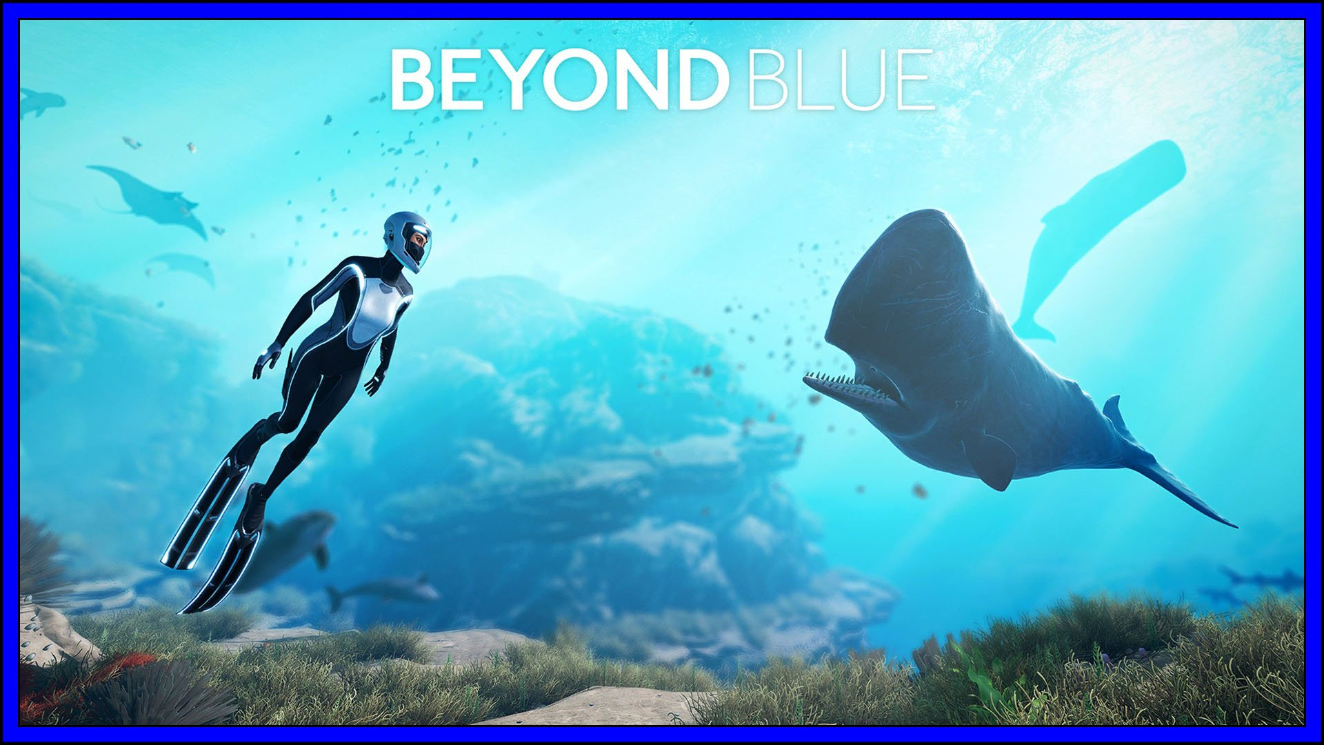Beyond Blue (PS4) Review