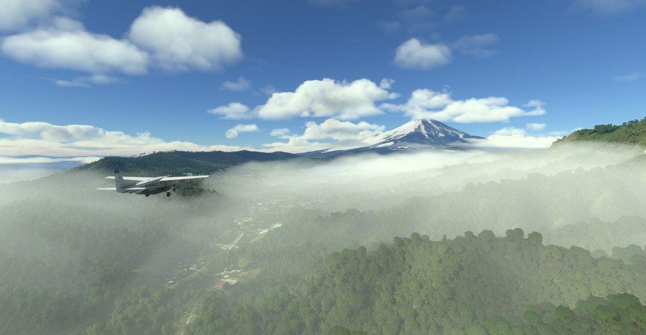 Microsoft Flight Simulator 1+1