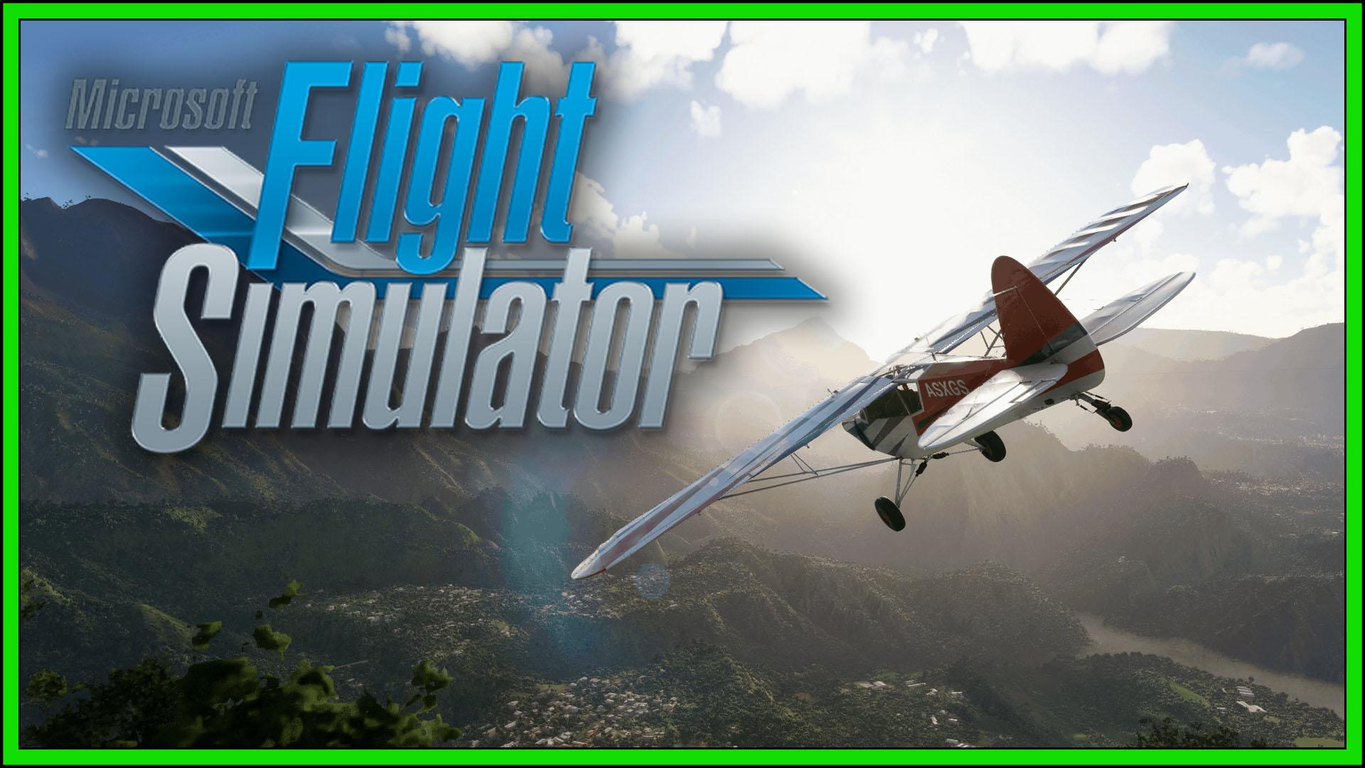 Microsoft Flight Simulator Fi3